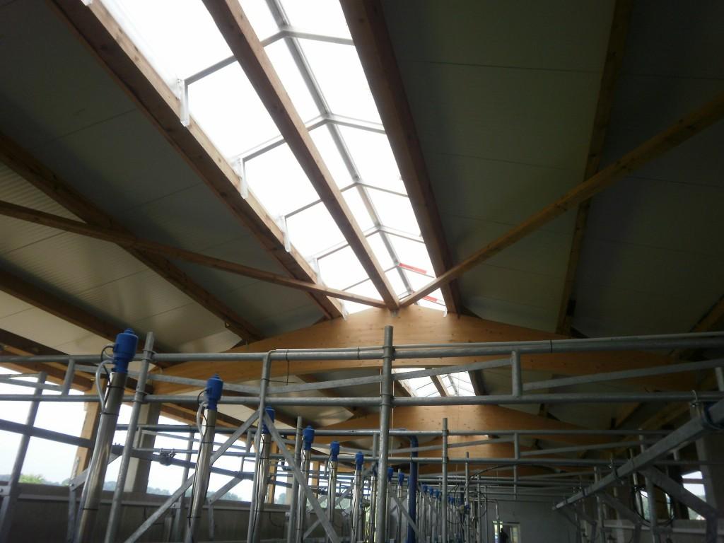 Halle für einen Melkstand mit Bogenbinder und Lichtfirst